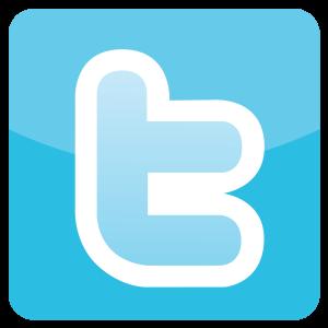 Twitter-Logo-Icon